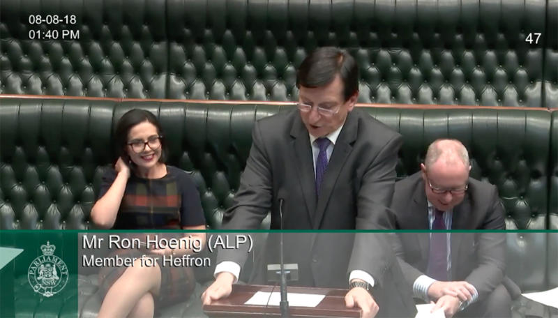 Sydney MP Ron Hoenig paid tribute to pig Kevin Bacon in his parliamentary speech.