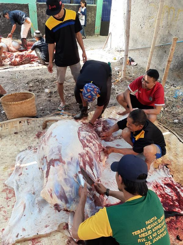 Nampak beberapa petugas kurban di masjid Jami Ar-Ridwan, Ciawitali Garut tengah menguliti hewan kurban sapi (Liputan6.com/Jayadi Supriadin)