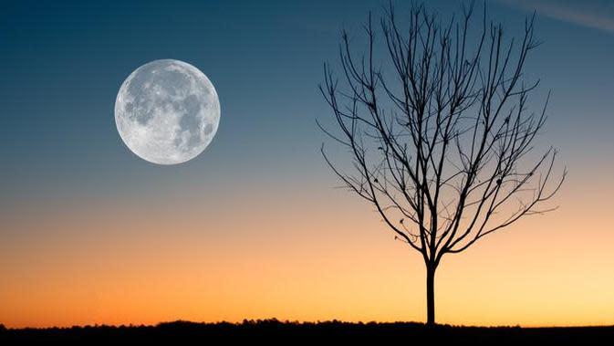 ilustrasi bulan. (Photo by David Besh from Pexels)