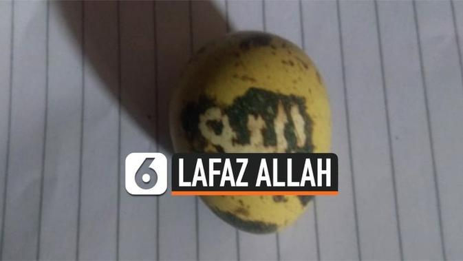 VIDEO: Telur Puyuh Berlafaz Allah Hebohkan Warga Kalsel