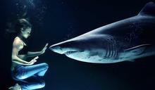 犧牲動物提升新冠疫苗效果 動保團體憂「25萬鯊魚將因此受害」