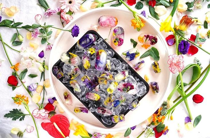 Edible flowers can jazz up your drinks when you freeze them as ice cubes.
