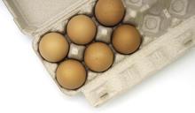 【Yahoo論壇/蕭景紋】加州疫情蔓延時:一盒雞蛋的啟示