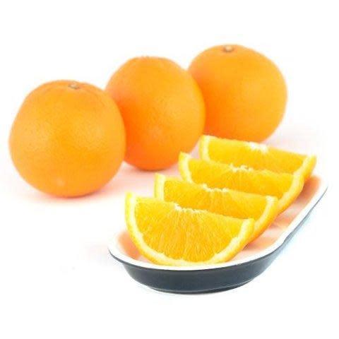 【水果都唔食得?】一歲前BB唔好食啊!