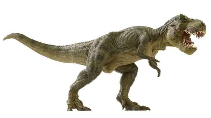 Ilustrasi jenis dinosaurus Tyronnosaurus Rex (Sumber: Istockphoto)