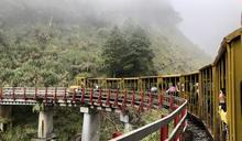 13處國家森林遊樂區 中秋國慶連假享「半價入園」