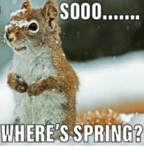 7 Funny Spring Memes To Welcome The New Season