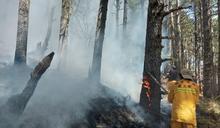 玉山森林大火延燒12天終於撲滅!林務局:鉅額損失一定求償