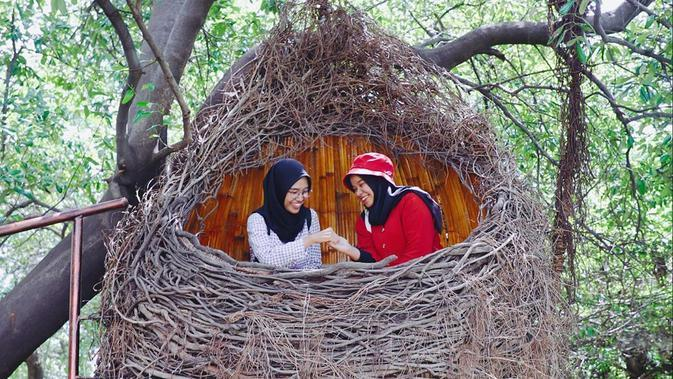 Potret Taman Mangrove Medokan, Spot Wisata Baru di Surabaya (sumber:Instagram/dkppsurabaya dan surabaya)