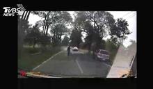 疑癲癇發作!子開車撞路樹重傷 母當場慘死