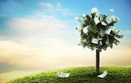 About to Buy Dividend Stocks? Read This First