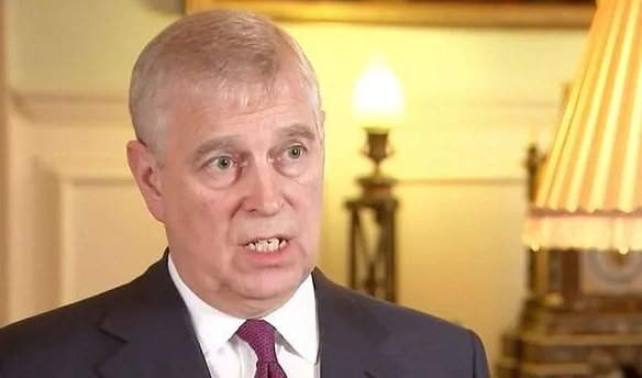 he duke was the UK's trade envoy until 2011 anPrince Andrew made the contentious comments during Pitch at Palace, a business summit he started to give a platform to to help British start up companies.