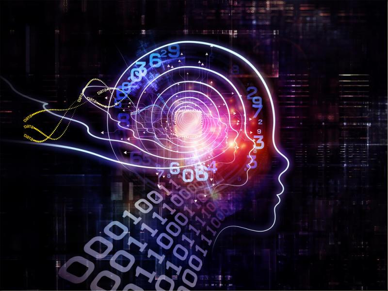 Digital consciousness