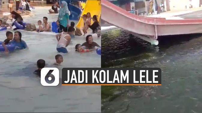 VIDEO: Dampak Pandemi, Kolam Renang Ini Alih Fungsi Jadi Kolam Lele