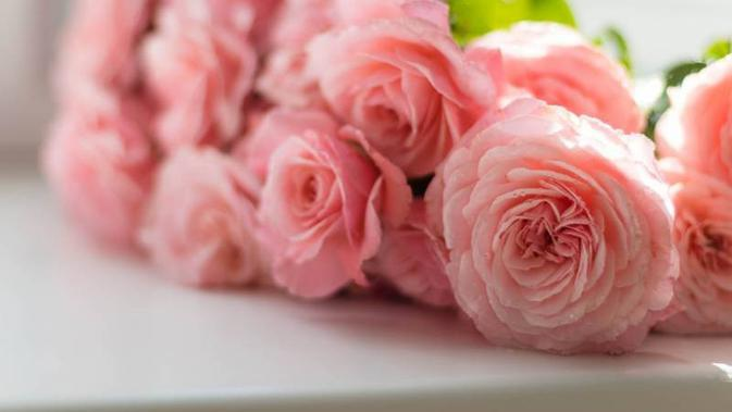 Ilustrasi bunga mawar | pexels.com
