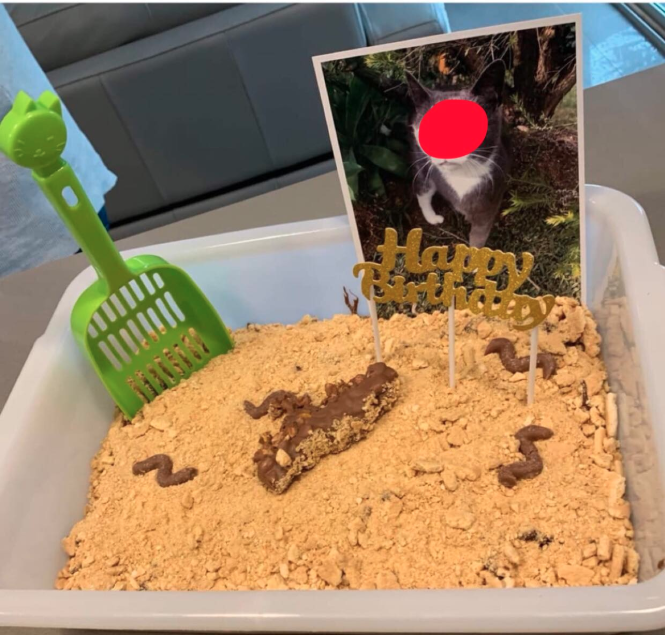 Cake fashioned into a kitty litter box with a photo of a cat, a plastic shovel and edible 'poo'