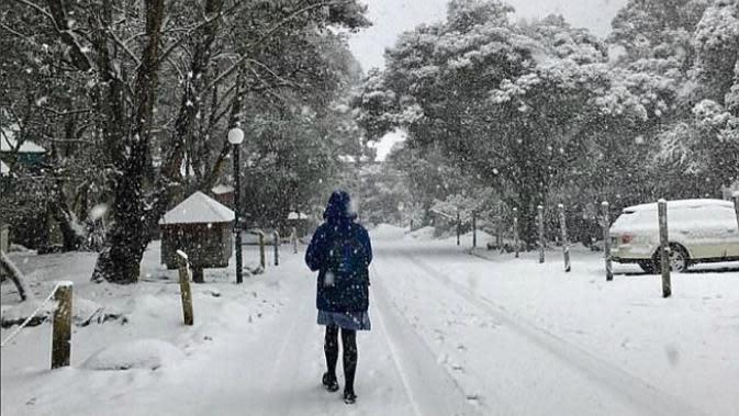 Ilustrasi musim dingin (Sumber Instagram/@designdetail)