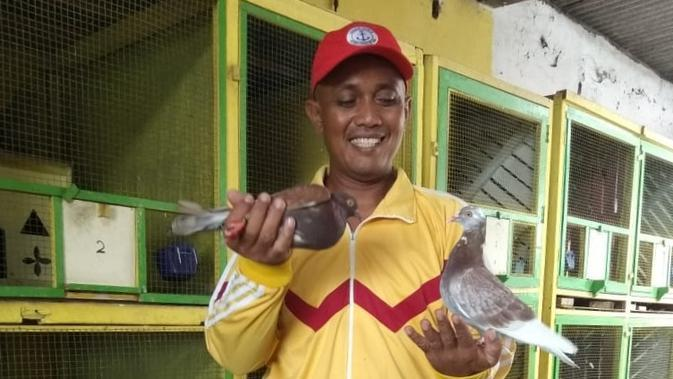 Gantung Sarung Tangan, Eks Kiper Petrokimia Putra Menekuni Ternak Burung Merpati Balap