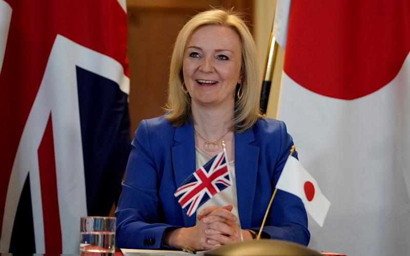"""Liz Truss says better modelling """"will help us capture the full benefits"""" of free trade agreements - ANDREW PARSONS/10 Downing Street/AFP via Getty Images"""