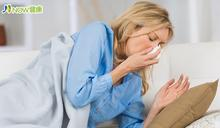 塵蟎誘發過敏體質 想擺脫鼻過敏應先改善鼻腔環境