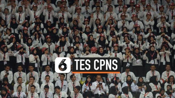 VIDEO: Pendaftar CPNS Tembus 3,3 Juta, Ini yang Paling Diminat