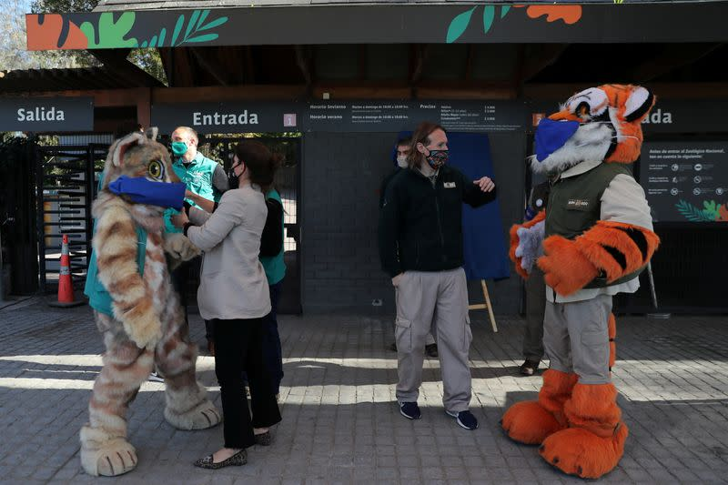 Wanted: Animal Godparents for Chilean Zoo in 'Bleak' Year