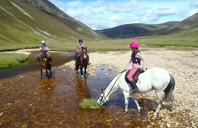 Horse-Themed Vacations in Britain Serve Up Equine Adventure