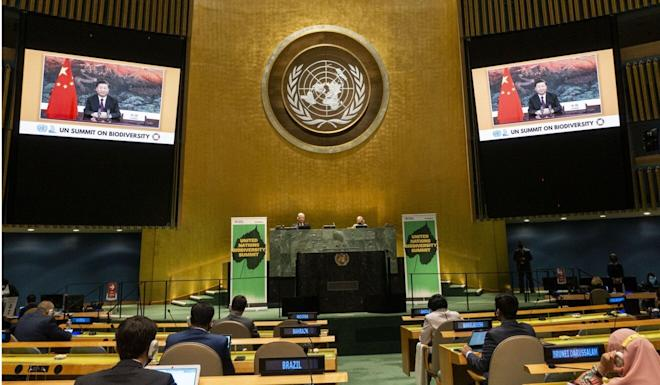 There were no US representatives at the United Nations Summit on Biodiversity. Photo: Xinhua