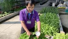 投縣環局推廣自然農法「蚓菜共生」
