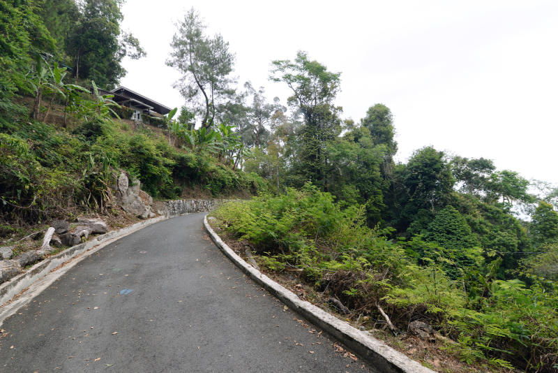 Penang Hill Corporation is working on an overall beautification and restoration masterplan for Penang Hill to preserve its natural environment while maintaining its existing infrastructure.