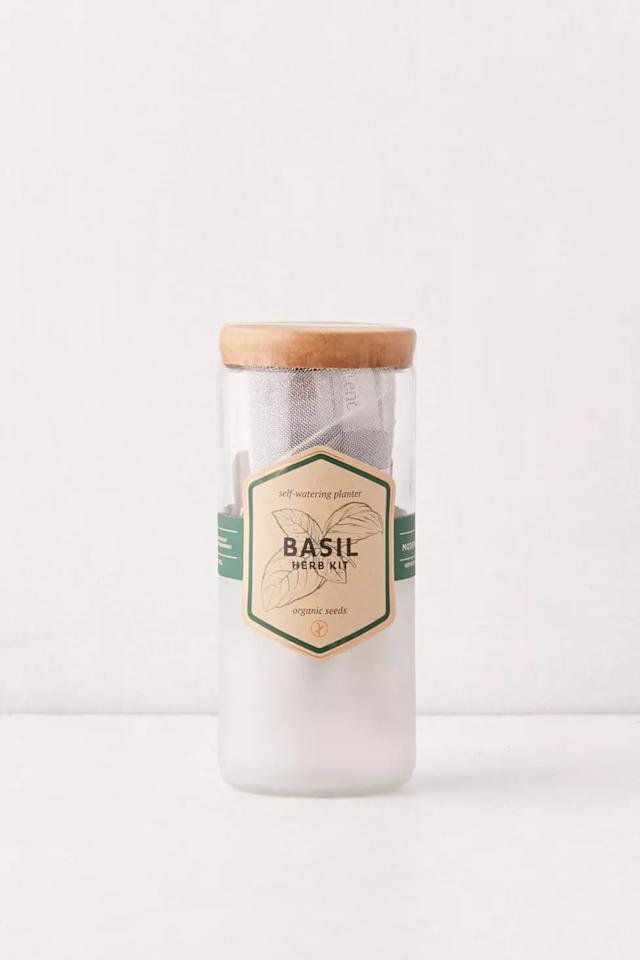 "<p><a href=""https://www.popsugar.com/buy/Basil-Plant-579241?p_name=Basil%20Plant&retailer=urbanoutfitters.com&pid=579241&price=25&evar1=casa%3Aus&evar9=45957373&evar98=https%3A%2F%2Fwww.popsugar.com%2Fhome%2Fphoto-gallery%2F45957373%2Fimage%2F47525323%2FBasil-Plant&list1=shopping%2Chouse%20plants%2Csummer%2Cplants%2Cgardens%2Cdecor%20inspiration%2Chome%20shopping&prop13=mobile&pdata=1"" rel=""nofollow"" data-shoppable-link=""1"" target=""_blank"" class=""ga-track"" data-ga-category=""Related"" data-ga-label=""https://www.urbanoutfitters.com/shop/modern-sprout-eco-planter?category=SEARCHRESULTS&amp;color=030&amp;searchparams=q%3Dbasil&amp;type=REGULAR&amp;size=ONE%20SIZE&amp;quantity=1"" data-ga-action=""In-Line Links"">Basil Plant</a> ($25)</p>"