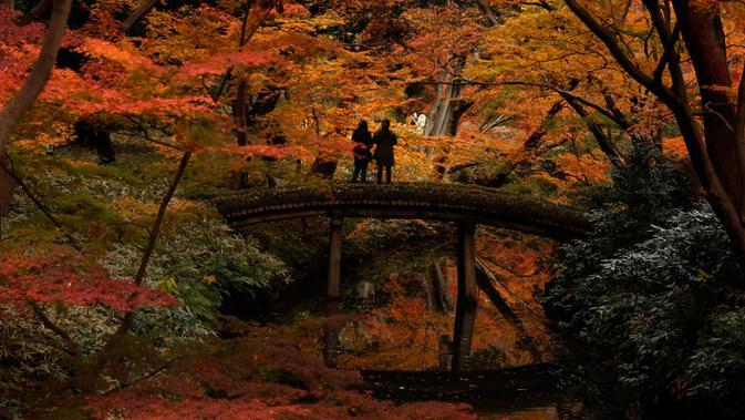 Wisatawan memotret warna-warni dedaunan saat musim gugur di Taman Rikugien, Distrik Bunkyo, Tokyo, Jepang, Selasa (10/12/2019). Musim gugur di Tokyo jatuh bulan November hingga pertengahan Desember. (AP Photo/Jae C. Hong)