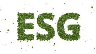ESG投資崛起 港股都有選擇(割柑人)