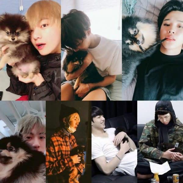 Manis Banget! 9 Potret Kebersamaan V BTS dan Tan, Anjing Kesayangannya