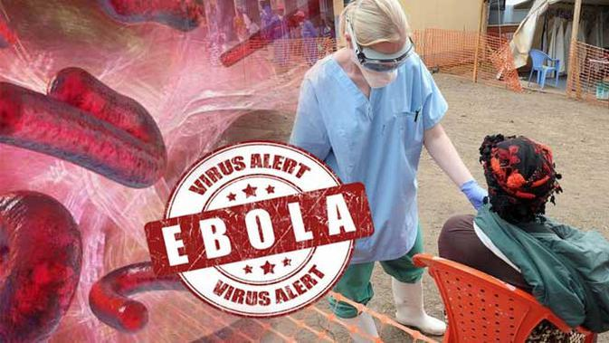 Ilustrasi Virus Ebola (Liputan6.com/Sangaji)
