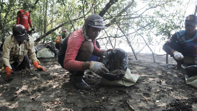 Nelayan mengumpulkan tumpahan limbah minyak (oil spill) yang mencemari Pantai Muara Beting, Muara Gembong, Bekasi, Jawa Barat, Minggu (28/7/2019). Pertamina mengajak nelayan setempat untuk mengumpulkan oil spill yang nantinya akan dipindahkan ke penyimpanan limbah B3. (merdeka.com/Iqbal Nugroho)