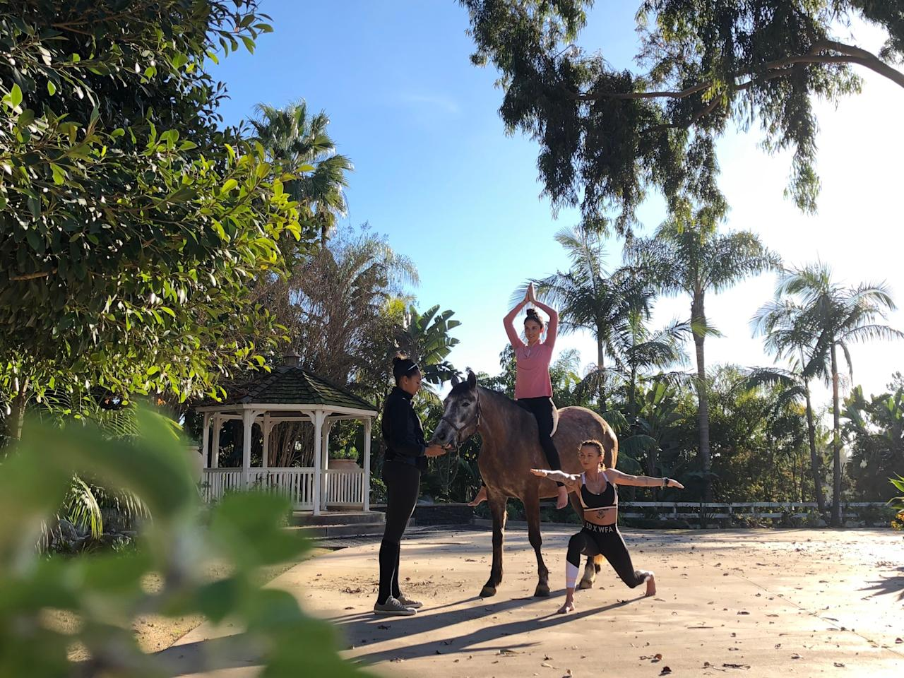<p>It combines meditation, yoga and equine therapy in a way that is safe for horse and rider. Photo: Supplied/Spirit Horse Yoga </p>