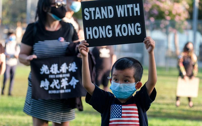 A young boy holds up a sign in Los Angeles showing his support for the protesters in Hong Kong - ZUMA Press, Inc. / Alamy Live News/https://www.alamy.com
