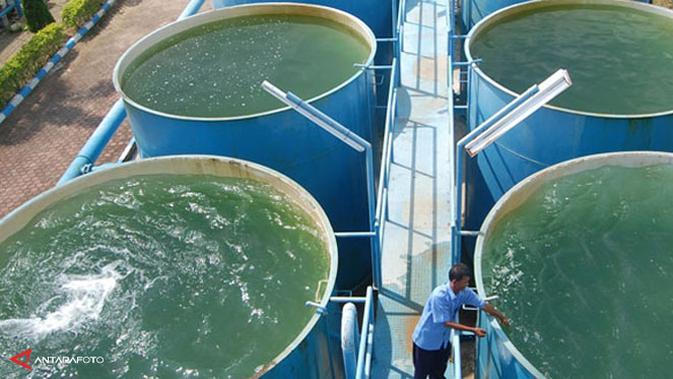 Aetra Akan Perbaiki Pipa Hari Ini, Warga Terdampak Diminta Hemat Air