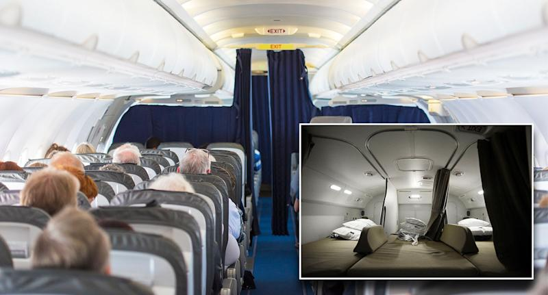 Plane passengers sitting on a plane. Where flight attendants sit sleep on a plane