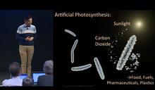 細菌將成能源新星 實驗產出乙酸