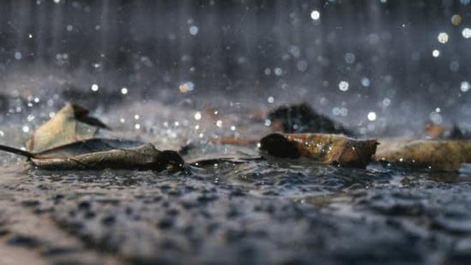 ilustrasi hujan. (Pixabay)