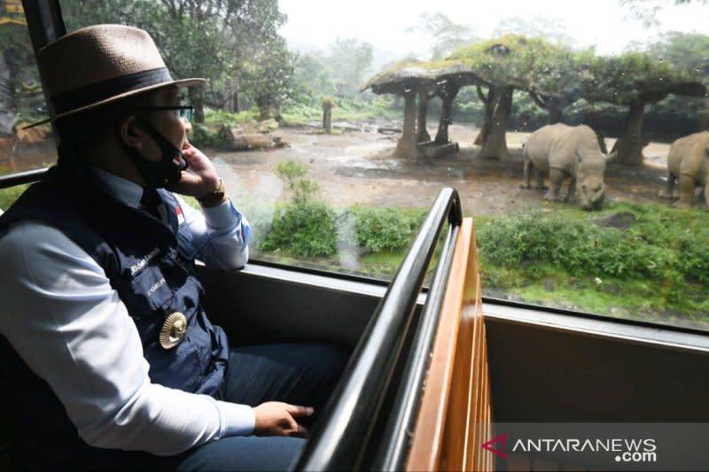 Ridwan Kamil izinkan Taman Safari Bogor kembali buka