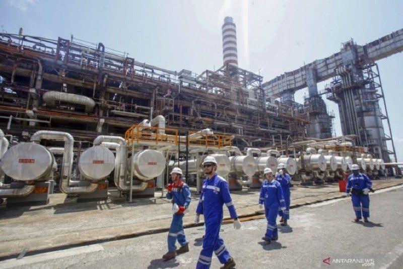 UEA jajaki investasi pengembangan kilang Pertamina di Balikpapan