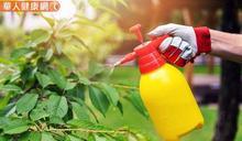 別小看殺蟲劑抗藥性影響!順應自然,善用生物防治法對抗害蟲效果更顯著