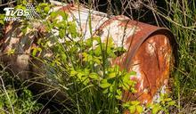 雙桶屍案逮8嫌 死者皆共犯成員「利益糾葛釀殺機」