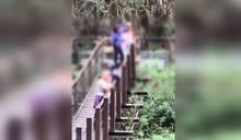 「新寮瀑布」步道落石封閉! 遊客硬闖不要命