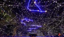 影/國境之南「偽出國」 屏東聖誕節點燈追極光