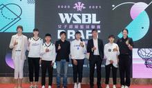 麥克瘋/WSBL女籃選秀 台電連兩屆大進補