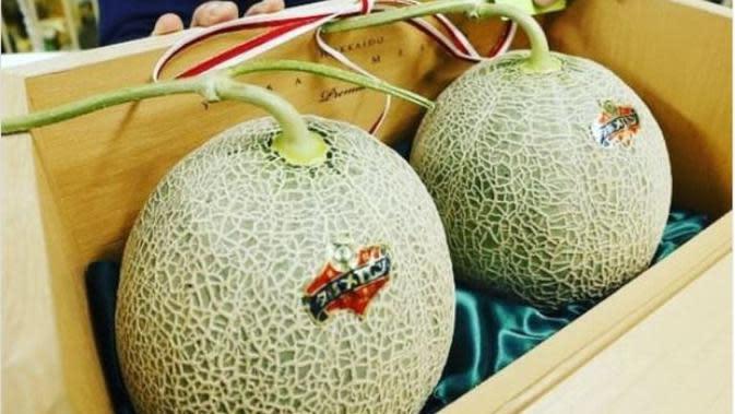Melon Yubari. (dok.Instagram @ladywinterinjapan/https://www.instagram.com/p/CAn8WykjIVK/Henry)